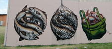 fintan-magee | fish | brisbane | australia (38 votes)