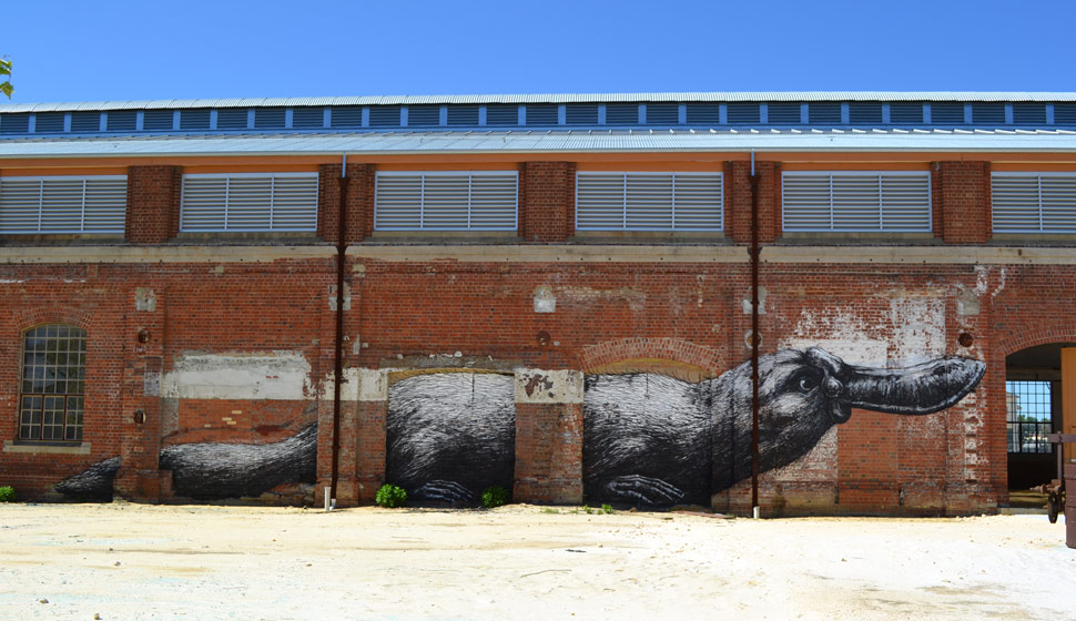 roa | australia