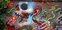 aryz | skull | barcelona | mv1010 (72 votes)