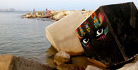 stinkfish | barcelona (20 votes)