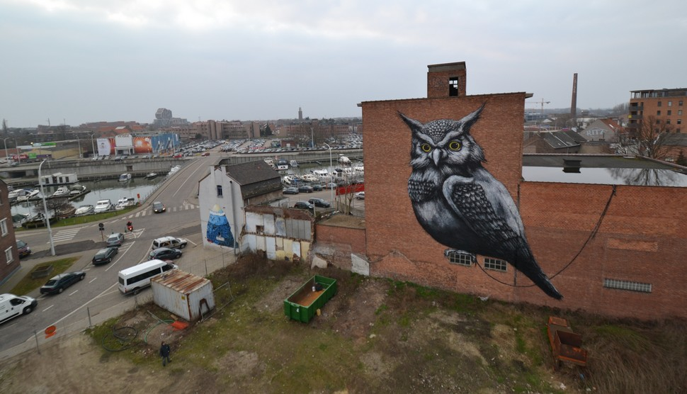 roa | resto | owl | hasselt | belgium