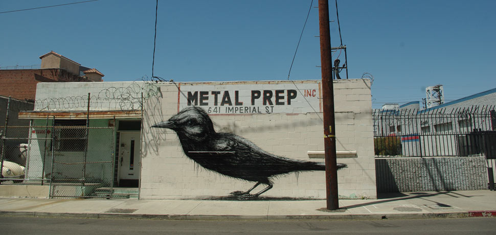 roa | bird | losangeles | california