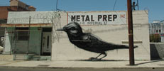 roa | bird | losangeles | california (16 votes)