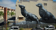 roa | sanfrancisco | california (20 votes)