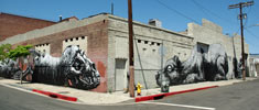 roa | losangeles | california (20 votes)