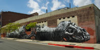 roa | losangeles | california (19 votes)
