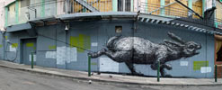 roa | rabbit | sanfrancisco | california (30 votes)