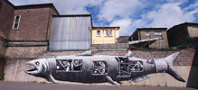 phlegm | fish | ireland | europe (8 votes)