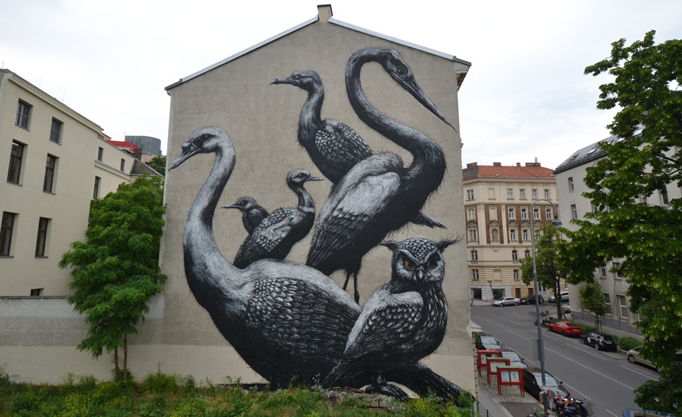 roa | bird | big | wien | austria | europe