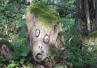 dav | tree | contextual-face | ariege | france (12 votes)