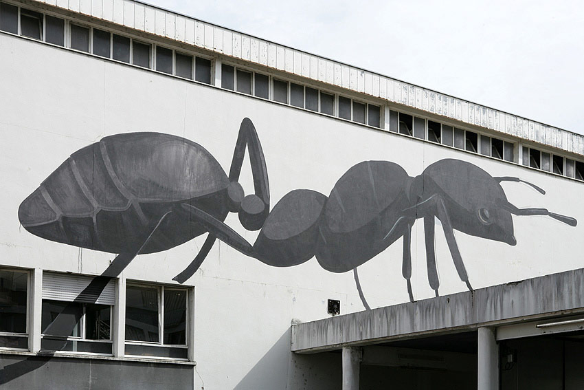 escif | ant | bu12 | besancon | france