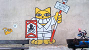 mrchat | cat | setes | france (22 votes)