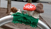 strickbombe | mushroom | saarbruecken | germany (18 votes)