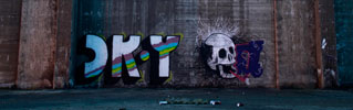 cr-y | 999 | skull | torino | italy (27 votes)