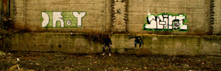 cr-y | squirt | torino | italy (23 votes)