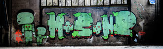 mosone | green | novara | italy (48 votes)