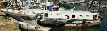 roa | boat | bird | ancona | italy | mv1010 (70 votes)