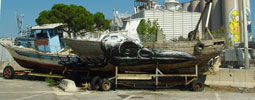 roa | boat | blu | ancona | italy (25 votes)