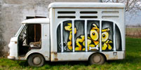 sqon | yellow | truck | italy | winter10 (68 votes)