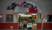 roa | saner | winter10 | mexico (111 votes)
