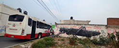 roa | cholula | mexico (10 votes)