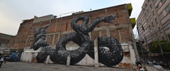 roa | snake | mexico (12 votes)
