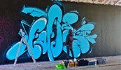 swet | blue | action | hague | netherlands