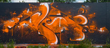 swet | orange | hague | netherlands (22 votes)