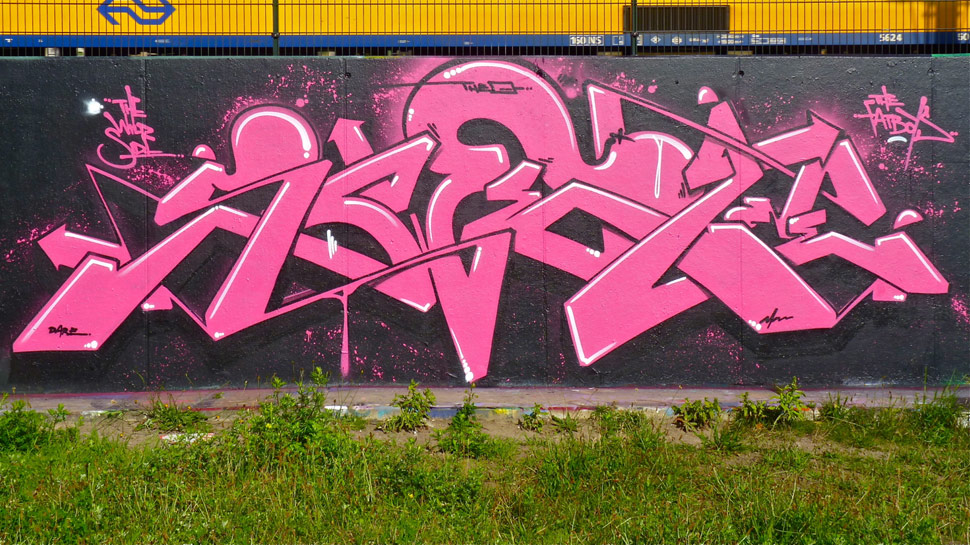 swet | pink | hague | netherlands