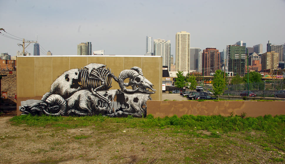 roa | chicago | north-america