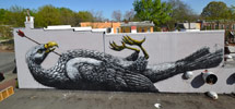 roa | bird | big | richmond | virginia | usa | north-america (10 votes)