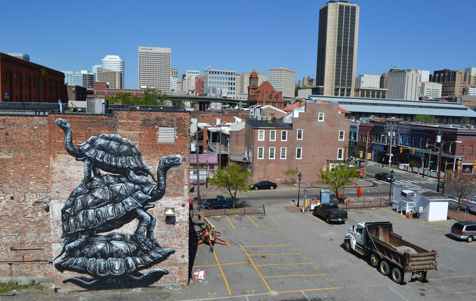 roa | turtle | richmond | virginia | usa | north-america