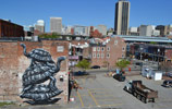 roa | turtle | richmond | virginia | usa | north-america (2 votes)