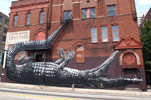 roa | crocodile | atlanta | north-america (32 votes)