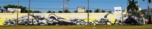 roa | miami | north-america (25 votes)