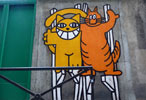mrchat | guillaume | cat | orange | paris (29 votes)