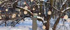 nespoon | tree | 3-d | snow | warsaw | poland | winter10 (61 votes)
