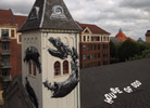 roa | scandinavia | denmark (17 votes)