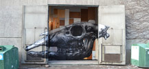 roa | stockholm | scandinavia (7 votes)