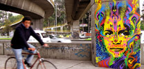 stinkfish | bogota | colombia | south-america (15 votes)