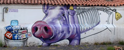 sabotajealmontaje | pig | tenerife | canarias | spain (42 votes)