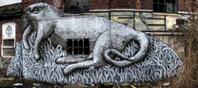 phlegm | cat | ukingdom (25 votes)