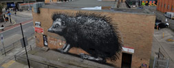 roa | big | london | ukingdom (14 votes)