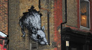 roa | rat | london | ukingdom (33 votes)