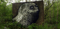 phlegm | sheffield | ukingdom (28 votes)