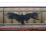 aris | freight | black | bird | europe (13 votes)