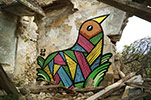 pablito-zago | bird | avignon | france (11 votes)