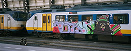 yesyo | bear | train | amsterdam | netherlands (8 votes)