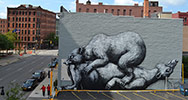 roa | bear | big | usa | north-america (8 votes)