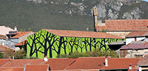 pablo-s-herrero | tree | green | salamanca | spain (10 votes)